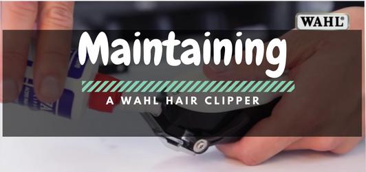 Maintaining Walh Clipper