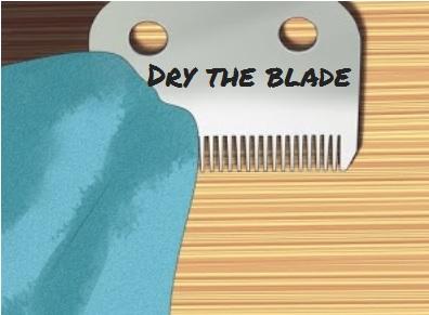 Dry blade