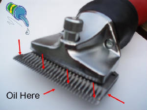 Oil Clippers